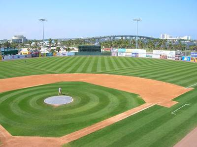 Daytona_field