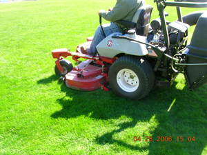 How Mow Stripes Your Lawn Murray Cook Field