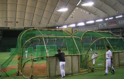 Japan_batting